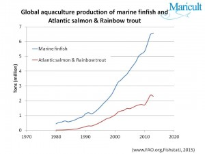 Total Atlantic salmon