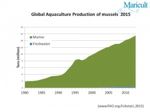Global production of mussels
